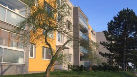 Nákladná vestavba přináší plody: Pronájmy z půdních bytů putují do pokladničky radnice Prahy 20