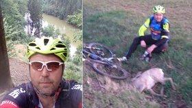 Nejdivnější silniční nehoda Česka? Cyklista skolil srnce, zvíře nepřežilo