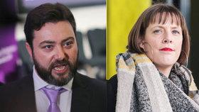 """""""Nestojí ani za znásilnění."""" Britský eurokandidát se za výpad na poslankyni neomluví"""
