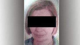 Velká pátrací akce u hranic skončila úspěchem: Policie našla německou turistku