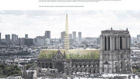 """Promění se Notre-Dame v """"zelenou"""" katedrálu? Včelín za věž a místo střechy skleník"""