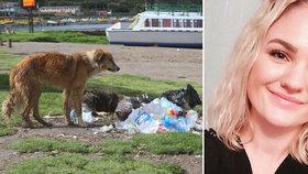 Dívka (†24) zemřela na vzteklinu: Nakazilo ji toulavé štěně, kterého se ujala