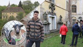 Zima, kozy, turisté a bohoslužby. Podívejte se na zámecký život Matěje Stropnického
