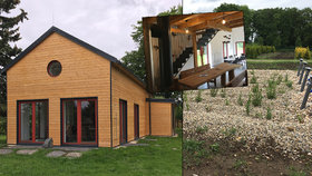 """Dřevák v pražském """"Pralese"""" je plný eko-vychytávek. Má zelenou střechu i kořenovou čističku"""