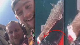Ohroženému žralokovi uřízli ploutev a nechali ho krvácet. Mladíci se odporným videem chlubili