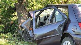 Tragická smrt na Karlovarsku: Mladý řidič narazil do stromu