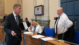 Audit o Babišově střetu zájmů: Ministerstvo odeslalo do Bruselu dopis, vysvětluje i Agrofert