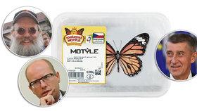 """Motýle jako sandále, brání Babiše expert. Zmínil i mluvu """"tlustého voliče"""" a Sobotku"""