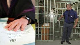 Další odsouzenec na svobodě?! Ústavní soud nařídil pustit Turka vinného pokusem o vraždu