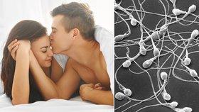 Lepší kvalitu spermií mají muži, kteří chodí spát dříve, tvrdí vědci