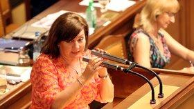 Sněmovna podpořila zdražení cigaret a lihovin. Pivo a víno se vyšší dani vyhnou