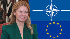 Čaputová sjednocuje Slovensko. Země se hlásí k NATO i k Evropské unii