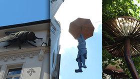 Lysohlávky nedaleko »Karláku« září už šest let: Pražané se pod nimi scházejí. Víme, jak se tu ocitly!