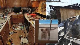 """""""Nic takového jsme nezažili,"""" popisují svědci zemětřesení. Moderátorka vlezla pod stůl"""