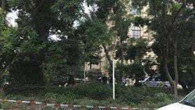 Mrtvola u Národního muzea: Policie zasahovala v přilehlém parčíku