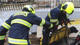 V Michli spadl pes do kanálu. Vytáhli ho hasiči