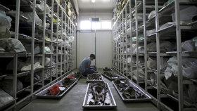 Nizozemci se podíleli na masakru ve Srebrenici, potvrdil soud. Vojáci oběti vydali vrahům