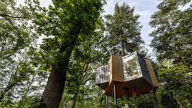 Dům na stromě? Perfektní útočiště nejen na prázdniny