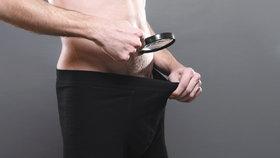 Manžel odmítl vyhnat krysu z ložnice: Žena mu za trest ukousla penis