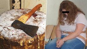 Hrůza na Orlickoústecku: Žena (26) umlátila matku sekerou! Když neumřela, vzala na ni provaz, říká policie