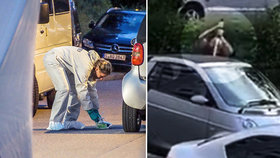 Syřan v Německu zavraždil mečem muže (†36) na ulici. Policie: Strašlivé