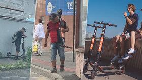 V Bratislavě začali půjčovat elektrokoloběžky. Půlku jich tu rozkradli