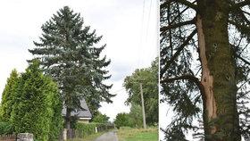 Tragédie na Děčínsku: Tady zemřela máma tří dětí při bouřce!