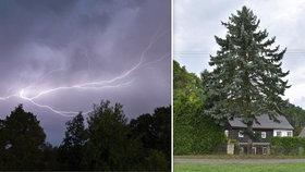 Svědectví z tragické bouřky na Děčínsku: Blesk sjel po stromě! Maminku oživovali 20 minut