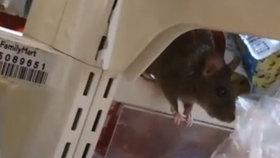 Tady byste nakupovat nechtěli: Z obchodu se po zavření stává hřiště potkanů