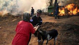 Řecko v plamenech: Hasiči bojují s živlem zatím marně, lidé utíkají z domovů
