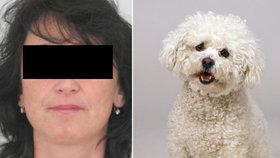 Jitka (48) zmizela při venčení i s pejskem: Někdo jí mohl ublížit, obává se policie
