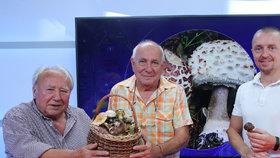 Vysílali jsme: Rostou! Experti radí, kam a kdy vyrazit na houby