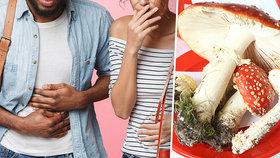 Manželé se otrávili obědem z jedovatých hub: Ve vážném stavu skončili na JIP!