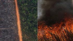 Hořící Amazonie bude mít děsivý dopad a naruší i potravní řetězec, varují ekologové