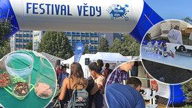 Na Festivalu vědy v Praze bylo narváno! Zaujal simulátor dopravní nehody, různá havěť i smažení červi