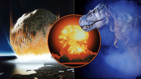 Vyhubil dinosaury asteroid? Vědci: Pak dopadl silou deseti miliard atomových bomb