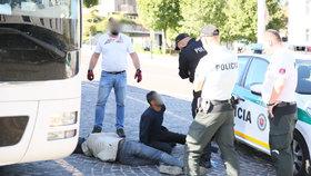 Český autobus přivezl z dovolené i dva migranty: Vyskákali z podvozku