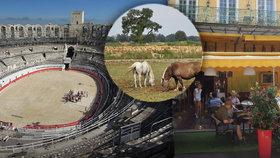 Van Goghovo Arles: Historický skvost v kraji bílých koní a plameňáků