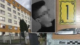 Provokatéra Andreje (17) pobodala spolužačka: Lékaři se báli, že to odnesou jeho plíce