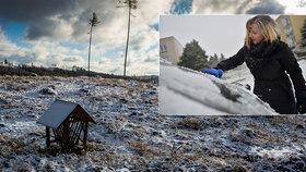 Do Česka dorazil mráz. Řidiči škrábou skla a konec je i s houbařením. Připravte se na sníh
