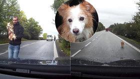 Dojemný dobrý skutek: Tomáš zachránil hluchou fenku z rušné silnice