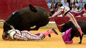 Toreador bojuje o život: Býk ho v aréně málem rozdrtil! Pak mu probodl rozkrok