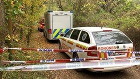 Šokující nález v Úněticích: V lese pod skalou ležel mrtvý muž