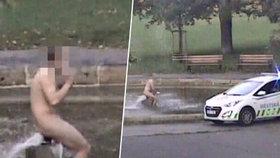 """Naháč se """"čachtal"""" v kašně na Karlově náměstí: Strážníky neposlechl, zabrala rázná přítelkyně"""