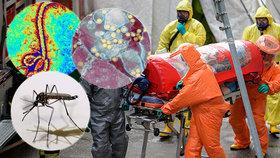 Miliony mrtvých v řádu hodin? Na smrtící pandemii Česko není připravené, tvrdí studie