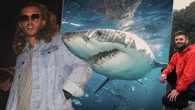 Turisty při plavání v moři napadl žralok! Jednomu ukousl nohu, druhého potrhal