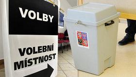 Koronavir zasáhl kampaň k podzimním volbám. Strany mění strategie a povolávají zkušené
