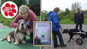 """Příběhy týraných psů vydělaly už půl milionu. Zaplatily první operace """"útuláčků"""""""