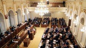 Referendum opět ve Sněmovně: Michálek vytáhl dům s věžičkou, Bělobrádek cvičení