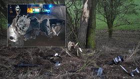 Noční tragédie na Mělnicku: Mladík narazil do stromu, pasažéři (†21 a †23) zemřeli